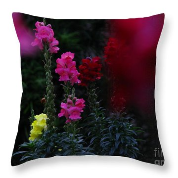 Snapdragon Throw Pillow by Greg Patzer