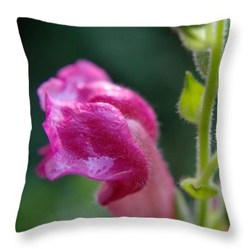 Snapdragon Hairs Throw Pillow