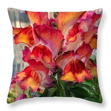 Snapdragon Sherbet Throw Pillow