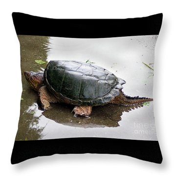 Snapping Turtle Throw Pillow