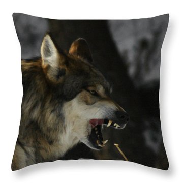 Snarling Wolf Throw Pillow by Ernie Echols