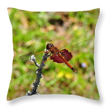 Throw Pillow featuring the photograph Shimmering Saddlebags by Al Powell Photography USA