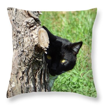Sneaky Cat Throw Pillow