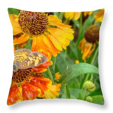 Sneezeweed Throw Pillow