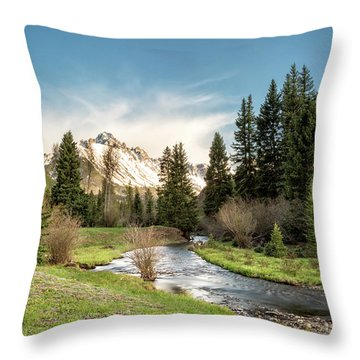 Sneffels And Spring Stream Throw Pillow