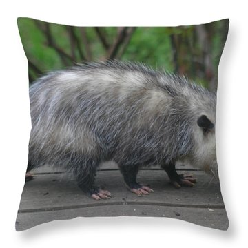 Sniffing Around Throw Pillow
