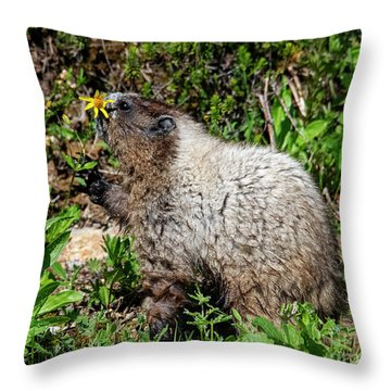 Sniffing The Flowers Throw Pillow