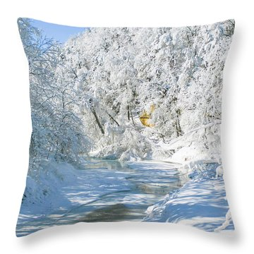Snl-1 Throw Pillow