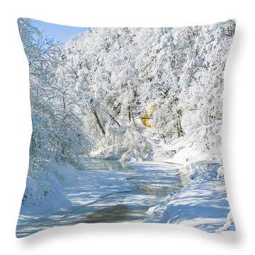 Snl-1 Throw Pillow