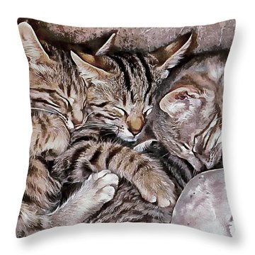 Snoring Purrs Of Kitten Brothers Throw Pillow