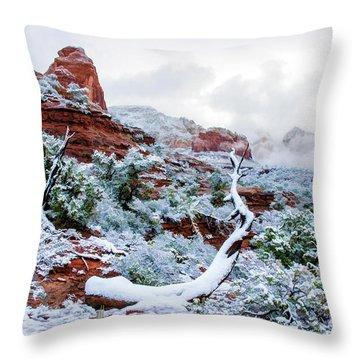 Snow 05-024 Throw Pillow