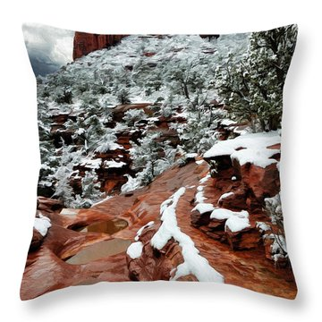 Snow 06-068 Throw Pillow