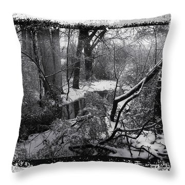 Snow 2018 Throw Pillow