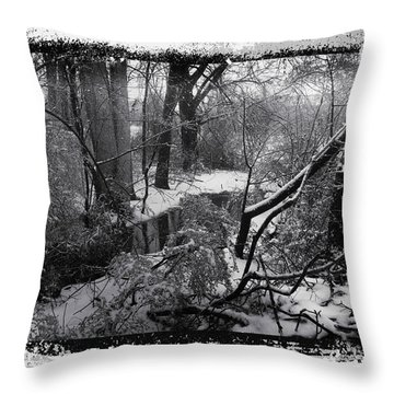 Throw Pillow featuring the photograph Snow 2018 by Robert G Kernodle