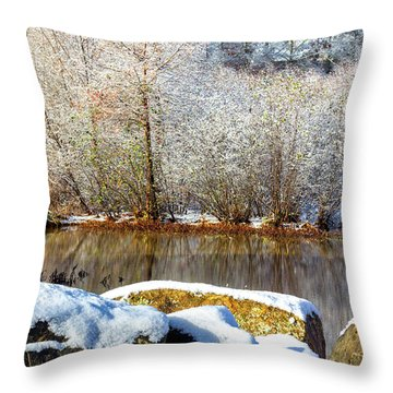 Snow Across The Lake Throw Pillow