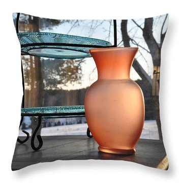 Throw Pillow featuring the photograph Snow And Glass by John Black
