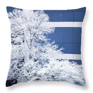 Snow Art Throw Pillow
