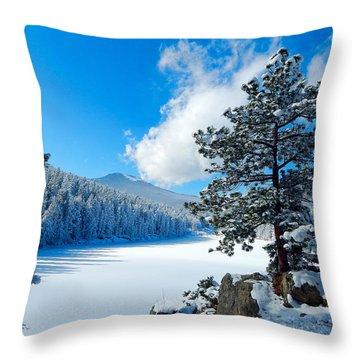 Snow At Beaver Brook Throw Pillow