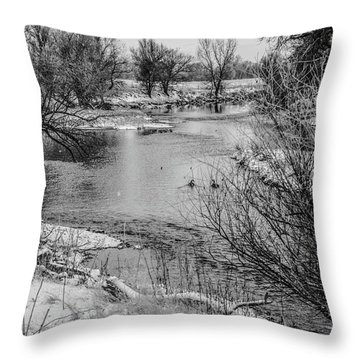 Throw Pillow featuring the photograph Snow Bird by Tyson Kinnison