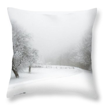 Snow Bound 2014 Throw Pillow