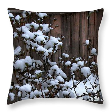 Throw Pillow featuring the photograph Snow Bush Abstract by Skyler Tipton