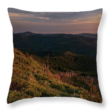 Snow Camp Lookout Throw Pillow by Leland D Howard