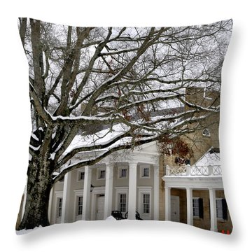 Snow Cover Throw Pillow