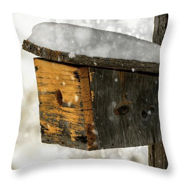 Snow Cover Throw Pillow by Sherman Perry