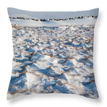 Snow Covered Grass Throw Pillow