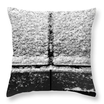Snow Covered Rear Throw Pillow