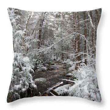 Snow Covered River Throw Pillow
