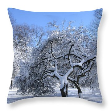 Throw Pillow featuring the photograph Snow-covered Sunlit Apple Trees by Byron Varvarigos