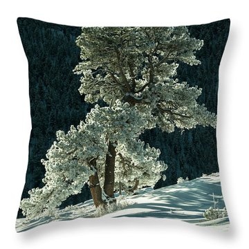 Snow Covered Tree - 9182 Throw Pillow