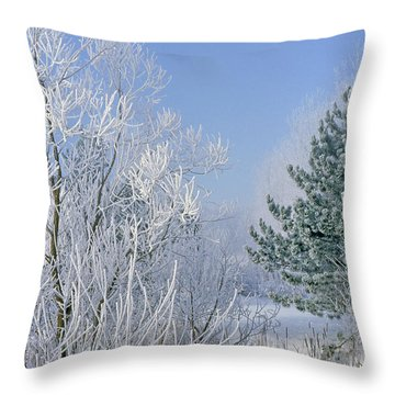 2a357 Snow Covered Trees At Alum Creek State Park Throw Pillow