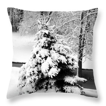 Snow Covered Trees Throw Pillow by Kathleen Struckle