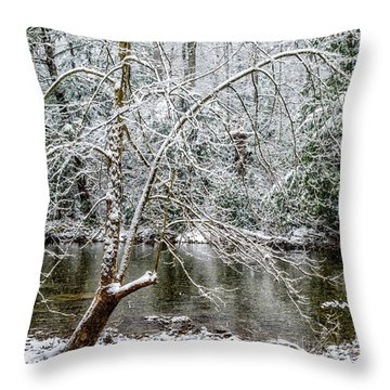 Throw Pillow featuring the photograph Snow Cranberry River by Thomas R Fletcher