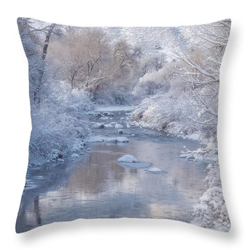 Snow Creek Throw Pillow
