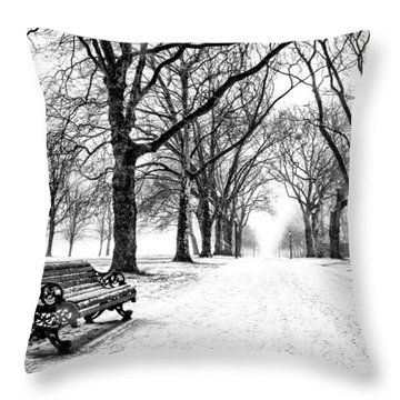 Snow Day Throw Pillow by Dominic Piperata