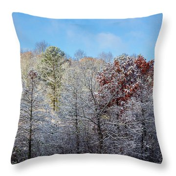 Snow Dust Throw Pillow