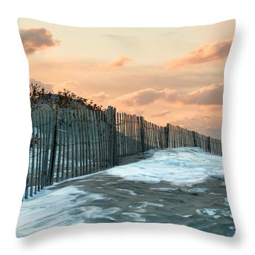 Throw Pillow featuring the photograph Snow Fence by Robin-lee Vieira