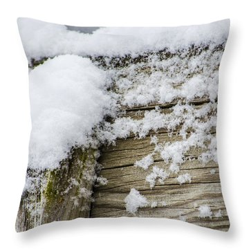 Snow Fluff And Woodgrain Throw Pillow