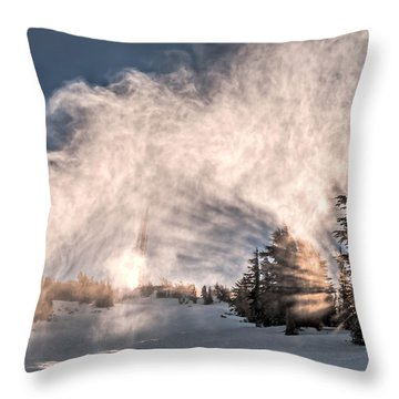 Snow Flume Throw Pillow