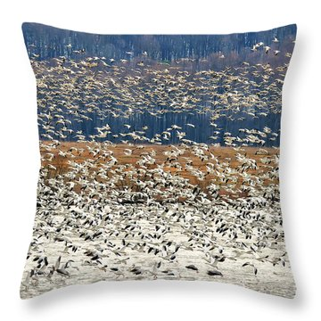 Throw Pillow featuring the photograph Snow Geese At Willow Point by Lois Bryan