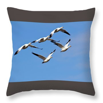 Throw Pillow featuring the photograph Snow Geese Flormation by Elvira Butler