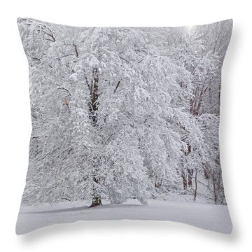 Snow Globe Throw Pillow by Angelo Marcialis