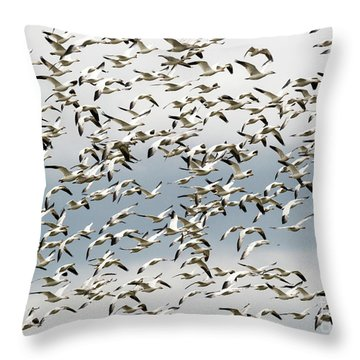 Throw Pillow featuring the photograph Snow Goose Storm by Mike Dawson