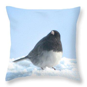 Snow Hopping #2 Throw Pillow