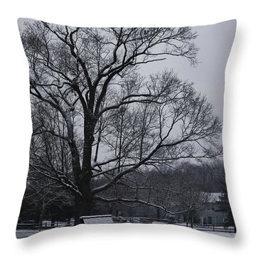 Snow In East Brunswick Throw Pillow