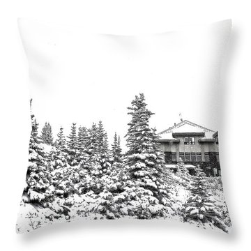 Throw Pillow featuring the photograph Snow In July 2 by Teresa Zieba