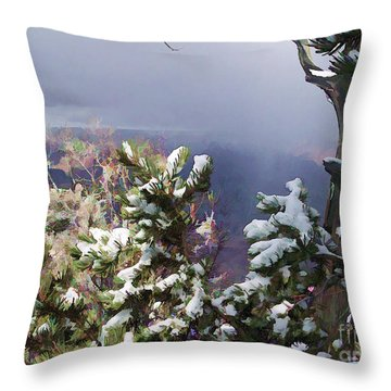 Throw Pillow featuring the photograph Snow In The Canyon by Roberta Byram